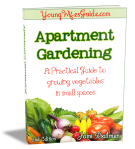 Apartment-Gardening-eBook-Cover-2nd-Edition-Single-Cover